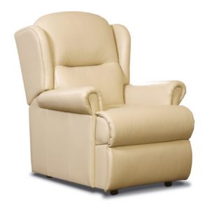 Malvern Small Leather Fixed Chair