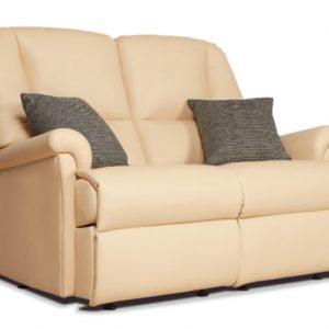 Milburn Standard Leather Fixed 2-Seater Settee